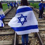 foto bandera iara